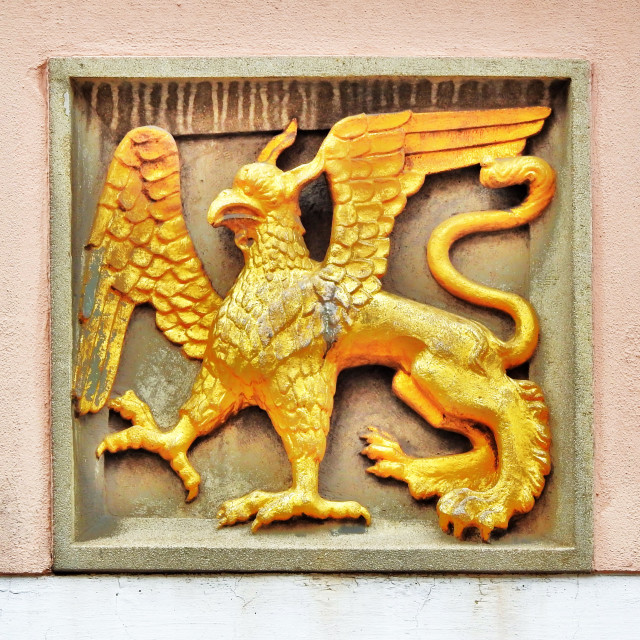"""""""Gold Griffin"""" stock image"""