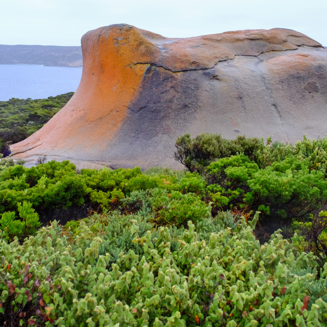 """Rock and trees in Kangaroo Island, Australia"" stock image"