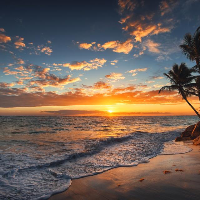 """Sunrise on a tropical island. Palm trees on sandy beach."" stock image"