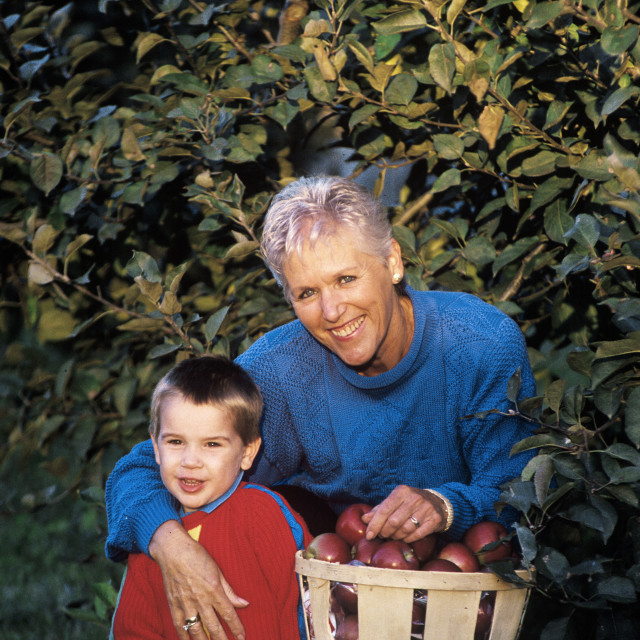"""""""Boy and his grandmother picking apples in an orchard."""" stock image"""