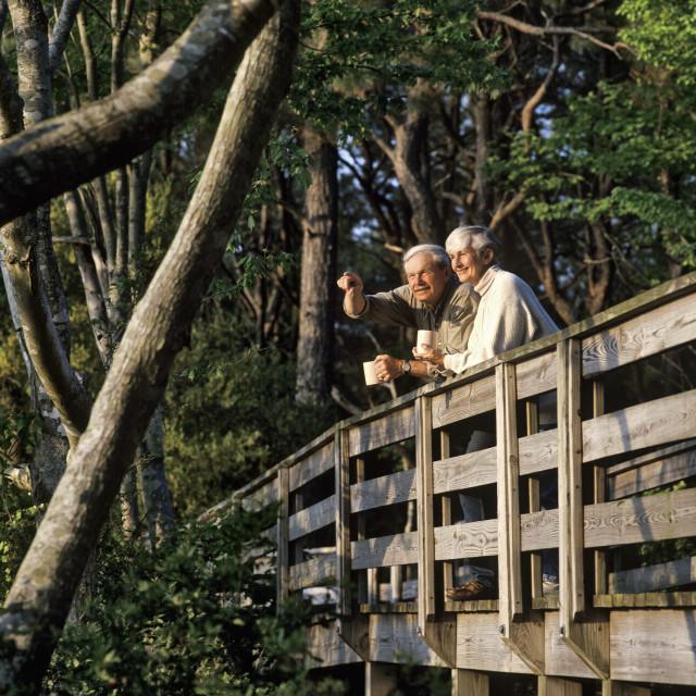 """Senior couple enjoying the view from a walking bridge, Outer Banks, North Carolina, USA. MR"" stock image"