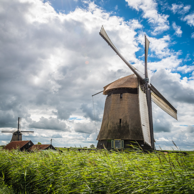 """Windmill in The Netherlands a sunny day"" stock image"