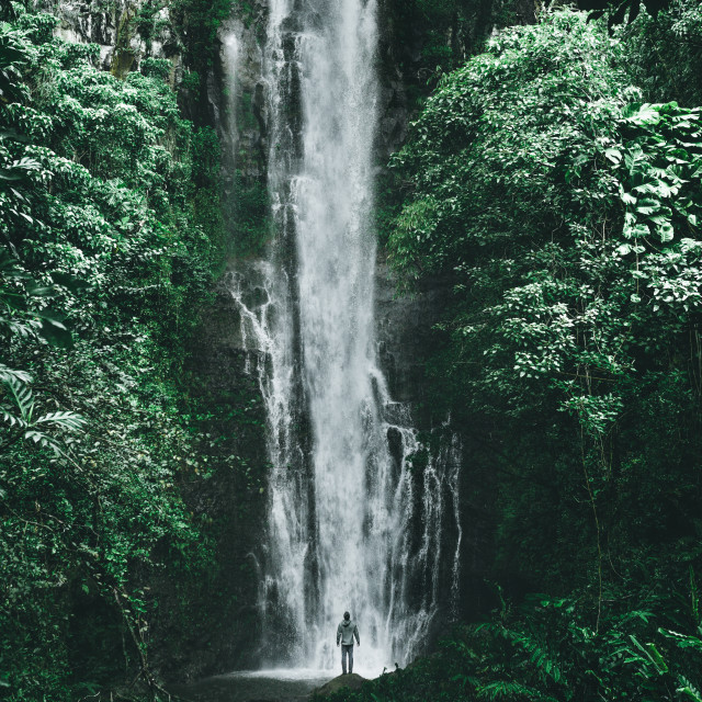 """Maui Waterfall"" stock image"