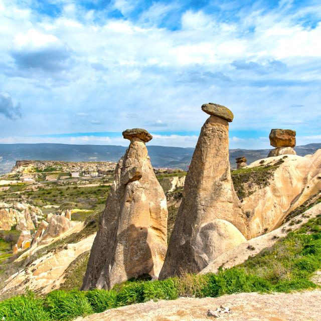 """""""Mushroom Rocks"""" stock image"""