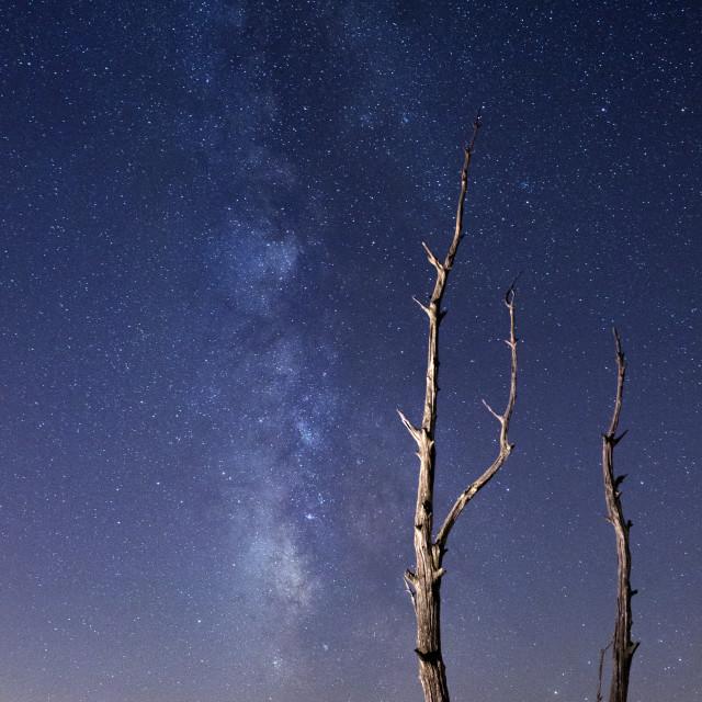 """A Starry Night Sky"" stock image"