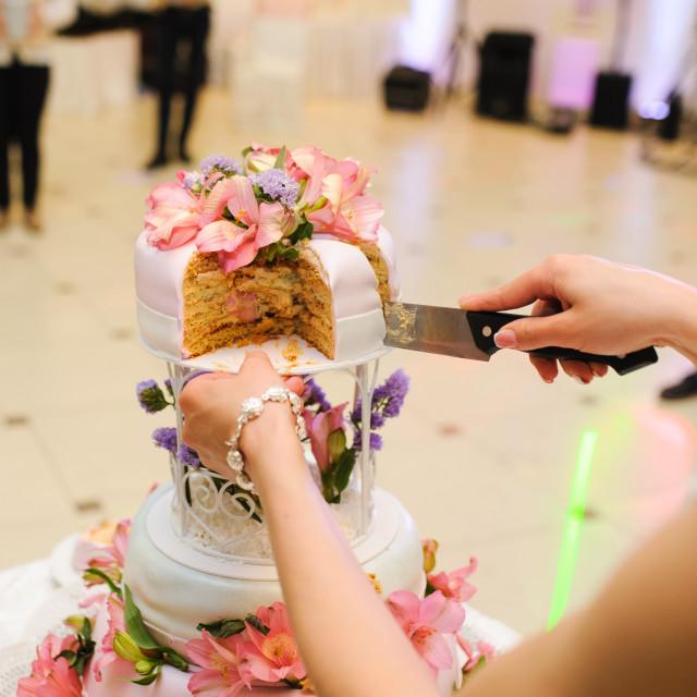 """Slicing the cake"" stock image"