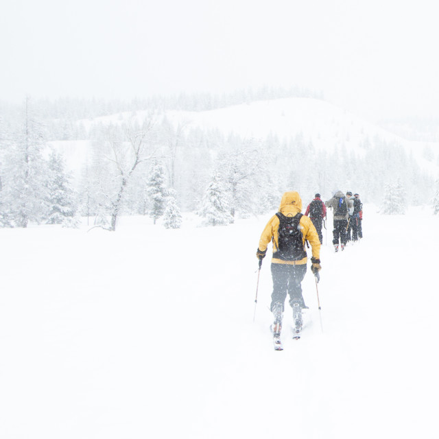 """Friends Cross Country Skiing"" stock image"