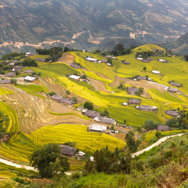 """idyllic village of ethnic minority people located between the terraced rice fields"" stock image"