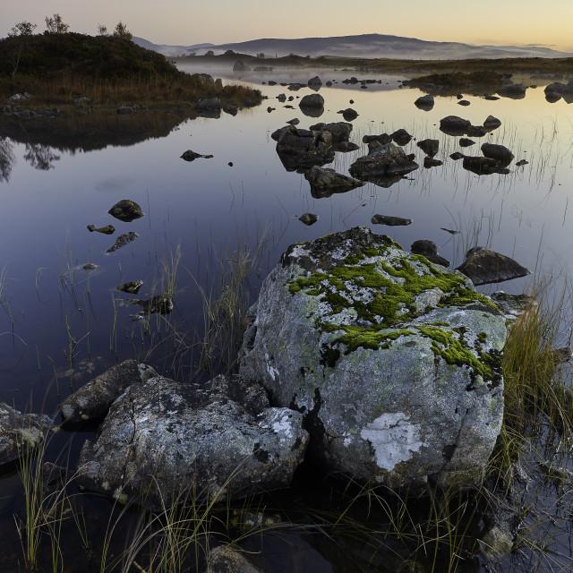"""Rannoch Moor, Highlands, Scotland"" stock image"