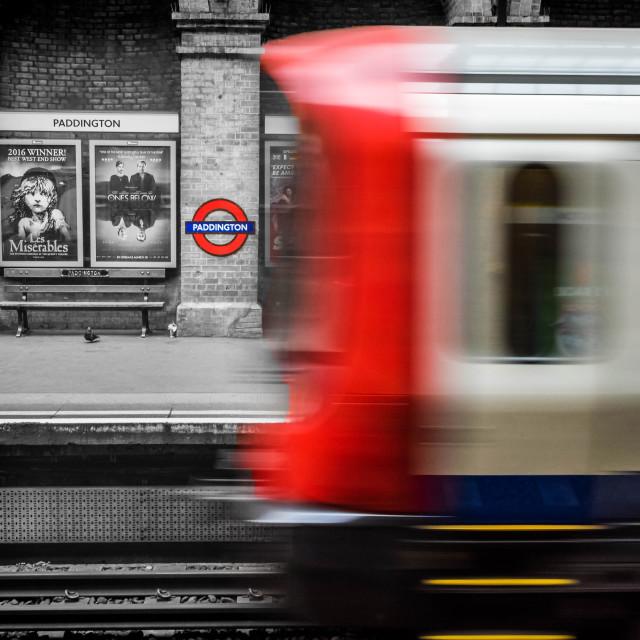 """Paddington Contrast"" stock image"