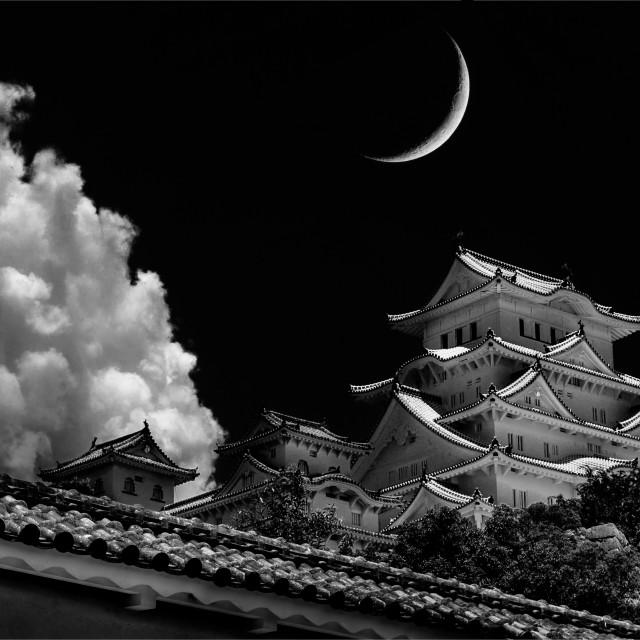 """The White Castle - Japan"" stock image"