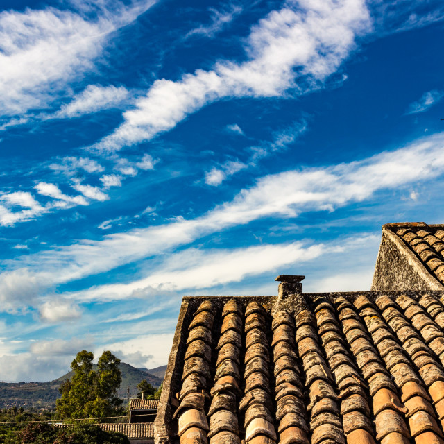 """""""The ancient roof"""" stock image"""