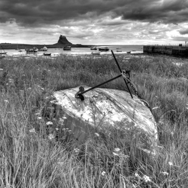 """Holy Island, Lindisfane National Nature Reserve"" stock image"