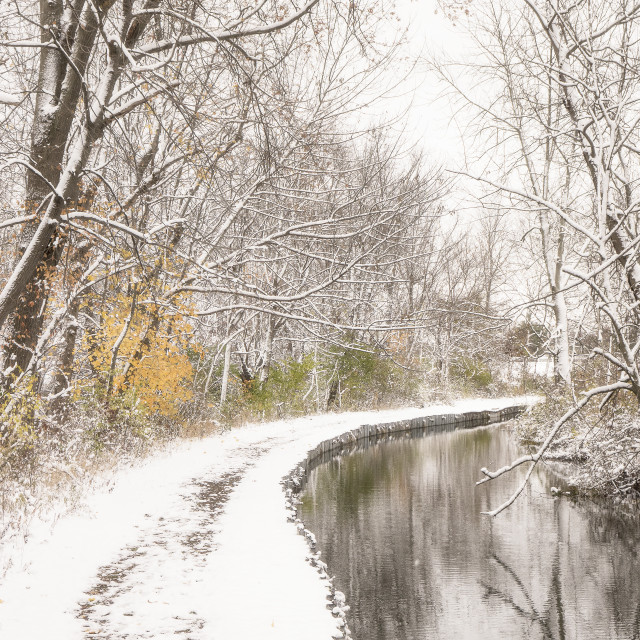 """""""First Snow at Firestone Park #2"""" stock image"""