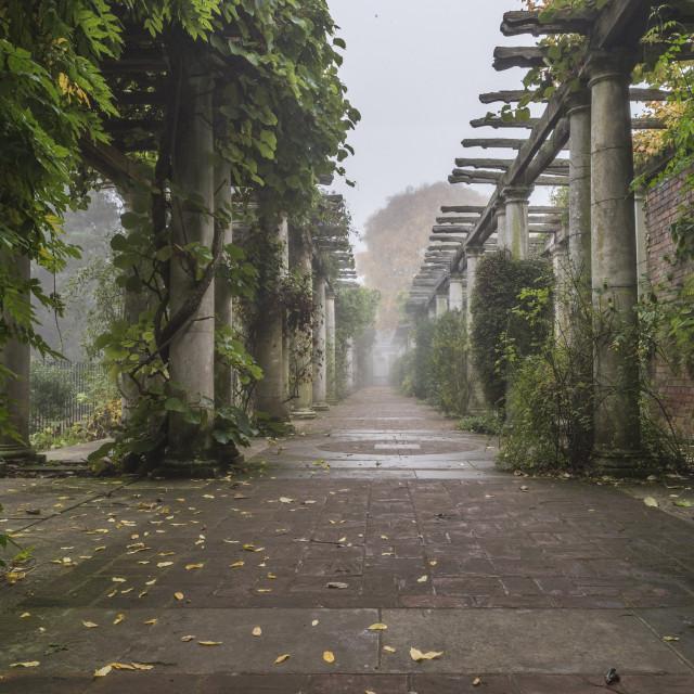 """Pergola Walkway"" stock image"