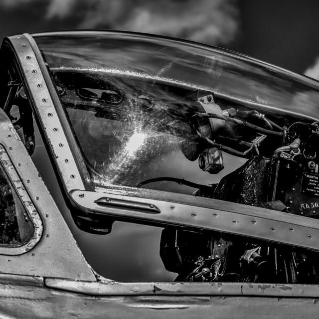 """""""Vampire Cockpit - monochrome"""" stock image"""