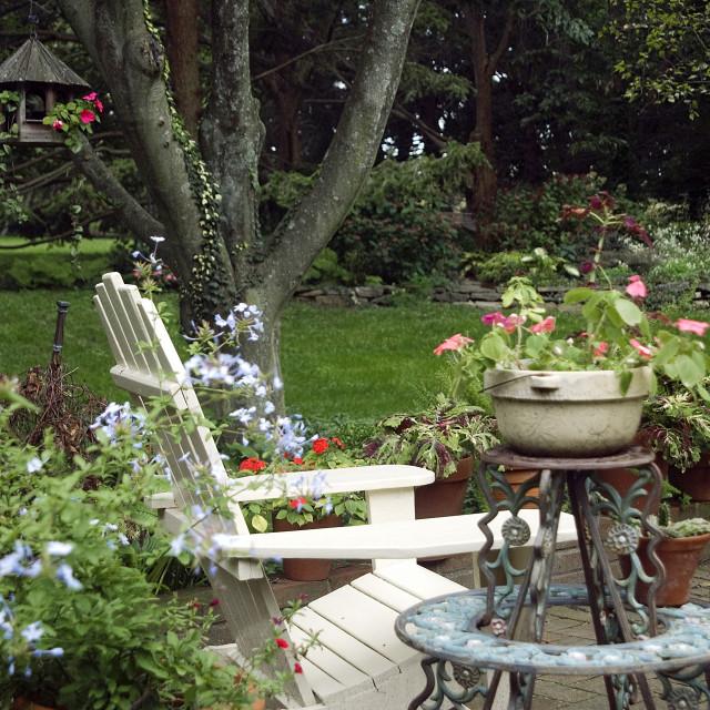 """""""Patio garden."""" stock image"""