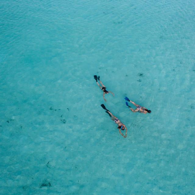 """Snorkeling in Maldives"" stock image"