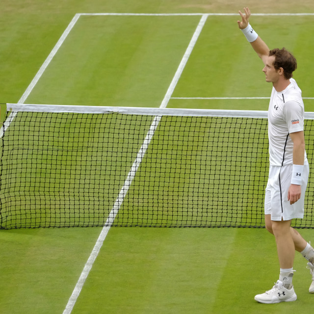 """""""Andy Murray"""" stock image"""