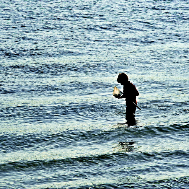 """""""Boy with with fishing net in shallow ocean water, Cape Cod, Massachusetts, USA."""" stock image"""