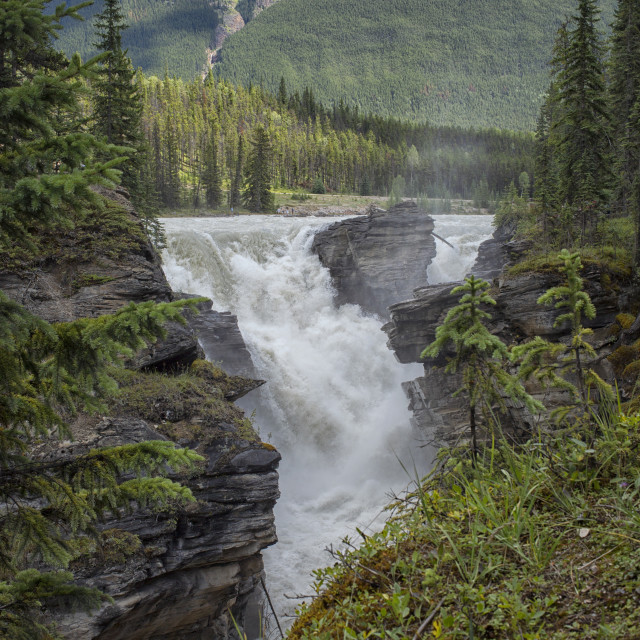 """""""Water falling with power on the rocks of Maligne Canyon"""" stock image"""