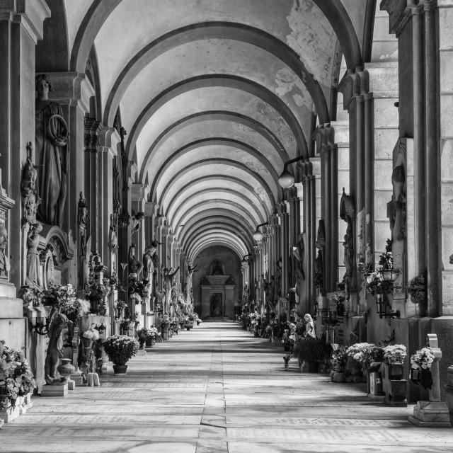 """Monumental Cemetery Of Staglieno"" stock image"