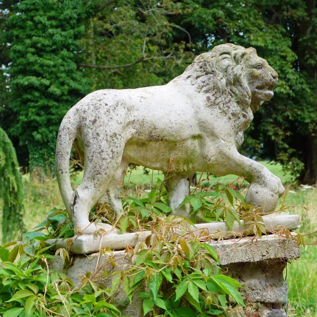 """Stone Lion"" stock image"