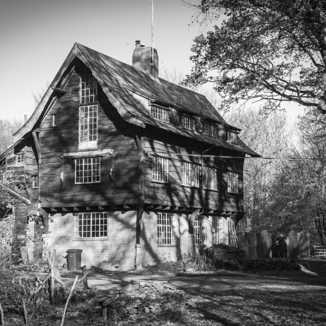 """The house in the woods"" stock image"