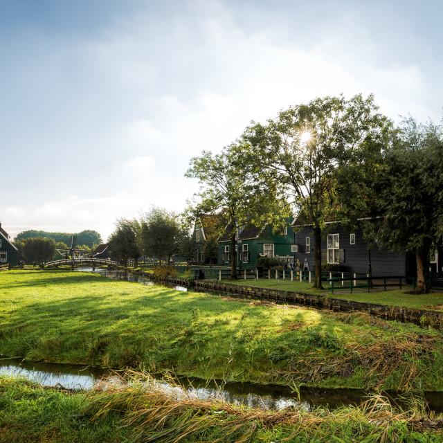 """Zaanse Schans Farm"" stock image"
