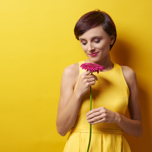 """""""One flower will cheer you up though"""" stock image"""