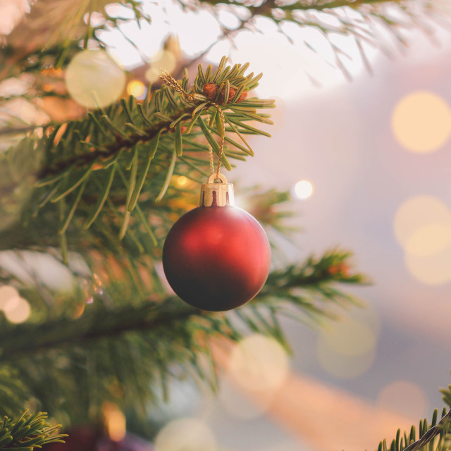 """Bauble on a christmas tree"" stock image"