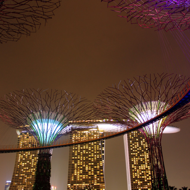 """night shot of Gardens by the bay singapore"" stock image"