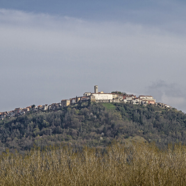 """Motovun in Istrien"" stock image"
