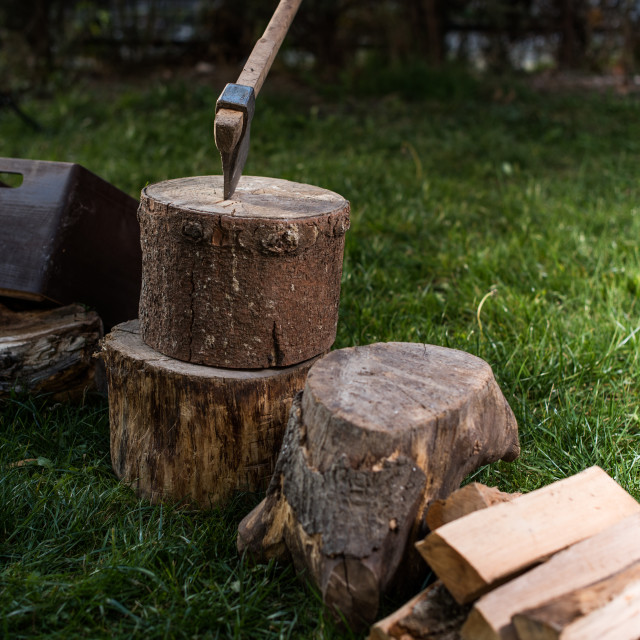 """ax in log"" stock image"