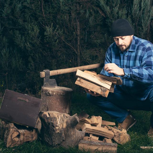 """lumberjack collecting firewood"" stock image"