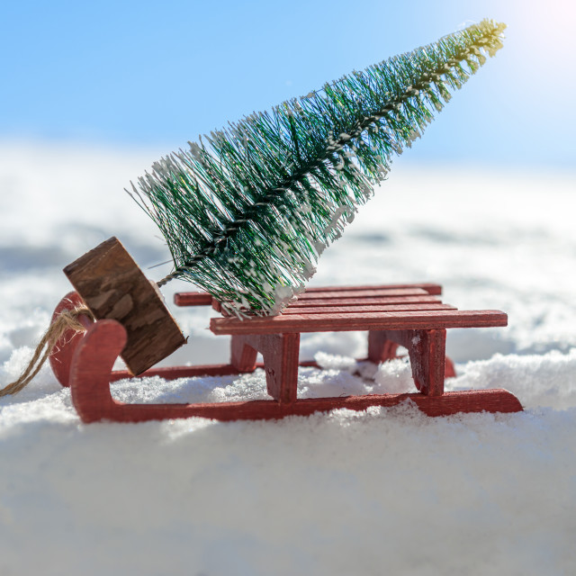 """""""Red sleigh carrying a small Christmas tree"""" stock image"""
