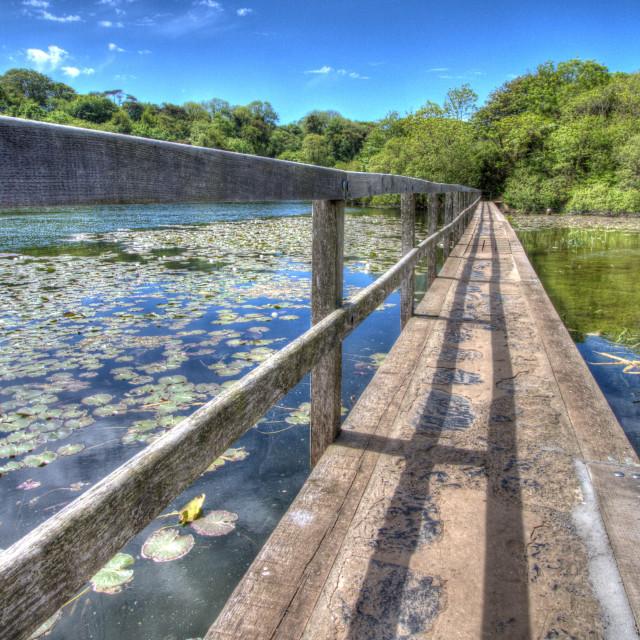 """Bosherton Lakes, Stackpole, Pembrokeshire"" stock image"