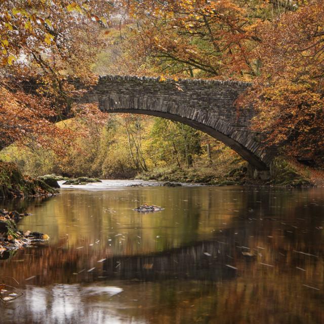 """""""Clappersgate Bridge in autumn"""" stock image"""