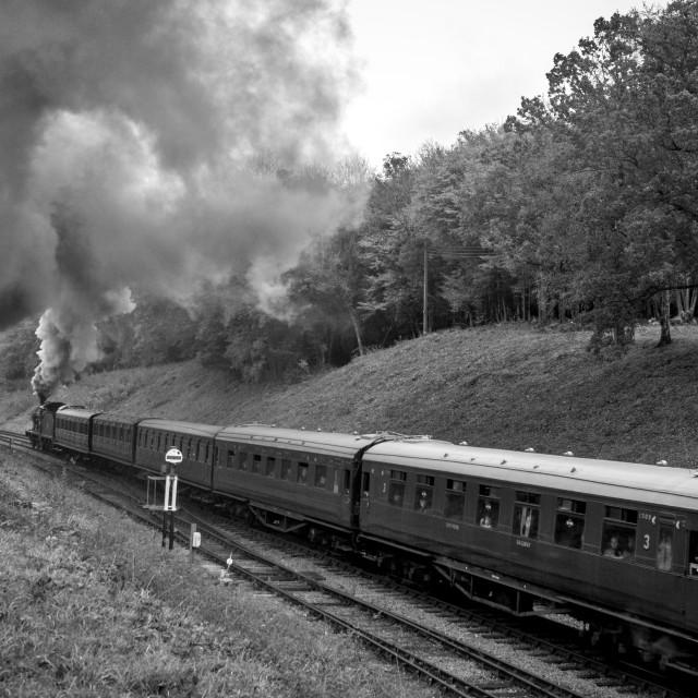 """SR Q Class No.30541"" stock image"