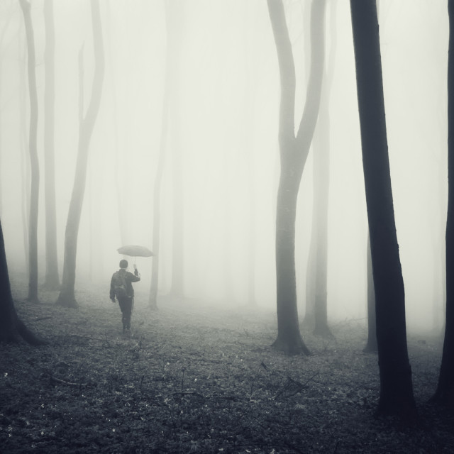 """Man with umbrella in mysterious forest with fog"" stock image"