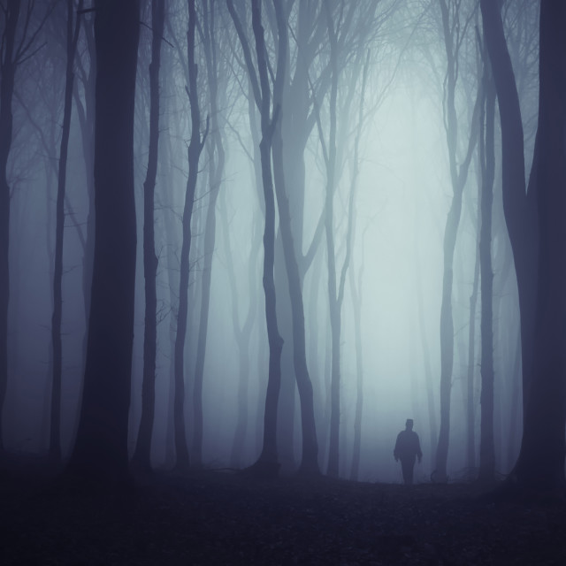 """Man in dark haunted Halloween frest with fog"" stock image"