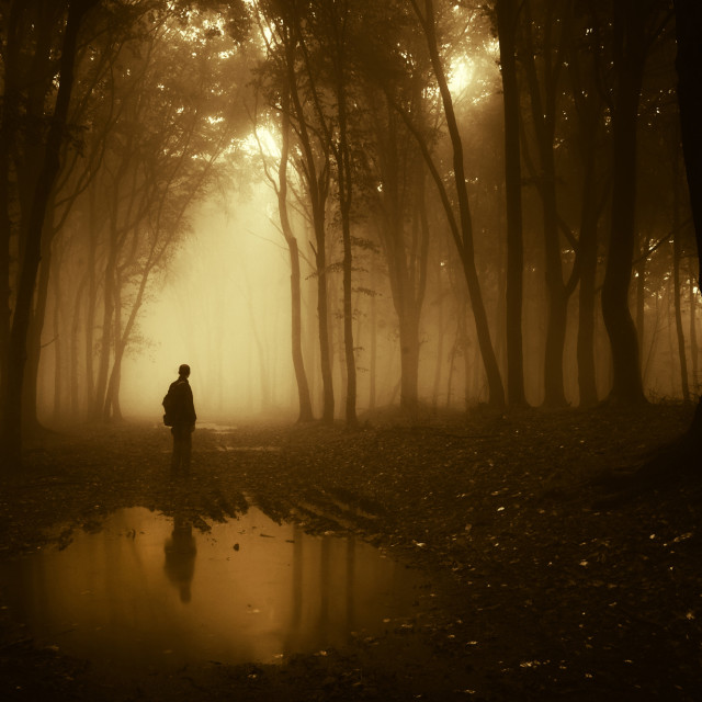 """Man in haunted forest with fog and lake"" stock image"