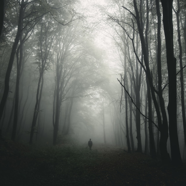 """""""Silhouette of man in haunted forest"""" stock image"""