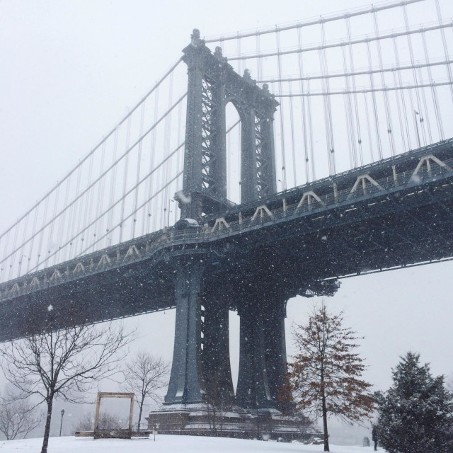 """The Manhattan Bridge stands over Brooklyn Bridge Park in the DUMBO neighborhood of Brooklyn, New York during a winter snowstorm."" stock image"