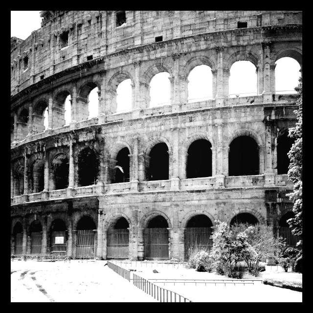 """Colosseo, roma, italy"" stock image"