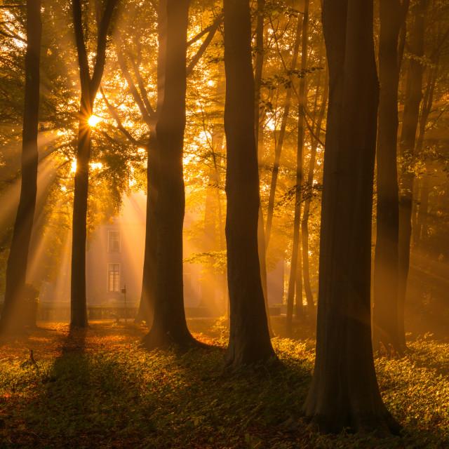 """I Love Autumn"" stock image"
