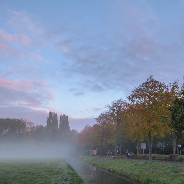 """""""Misty Autumn Mornings"""" stock image"""