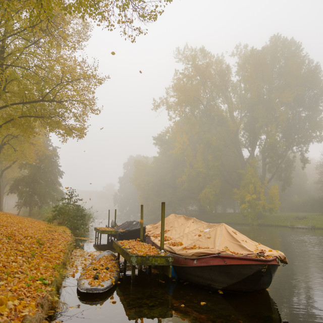 """""""A boat in the misty Dutch canals"""" stock image"""