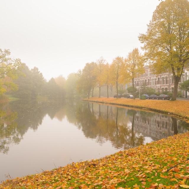 """Last of the Fog"" stock image"