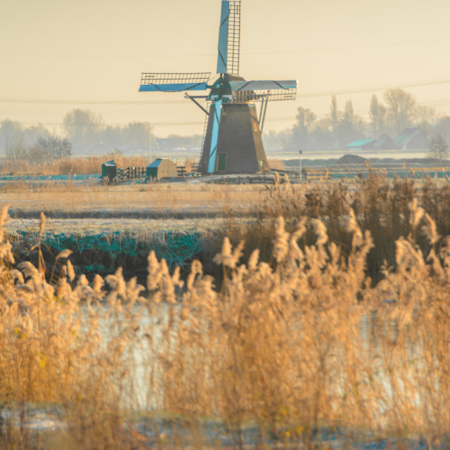 """""""A lonely windmill on a cold morning"""" stock image"""